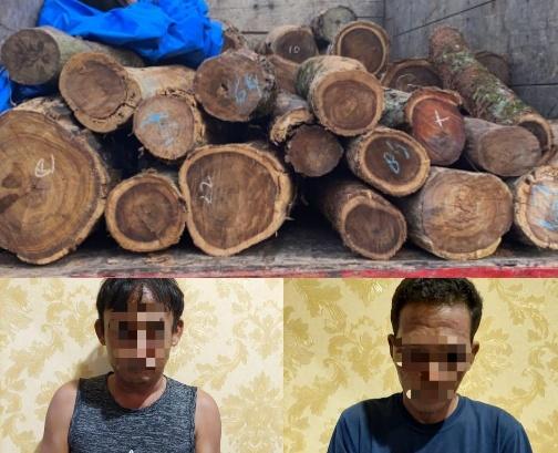 Bawa Kayu Sonokeling Tanpa Izin, Dua Warga Lamtim Diamankan Sat Reskrim Polres Lampura